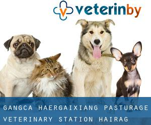 Gangca Ha'ergaixiang Pasturage Veterinary Station (Hairag)