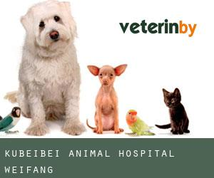 Kubeibei Animal Hospital (Weifang)