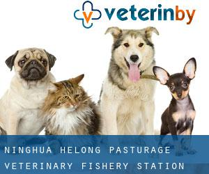 Ninghua Helong Pasturage Veterinary Fishery Station