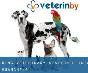 Ring Veterinary Station Clinic (Huancheng)
