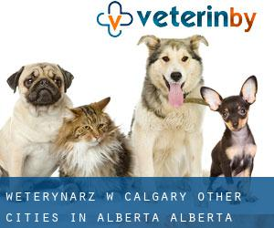 Weterynarz w Calgary (Other Cities in Alberta, Alberta)