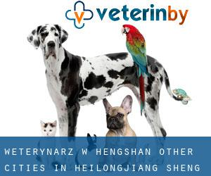 Weterynarz w Hengshan (Other Cities in Heilongjiang Sheng, Heilongjiang Sheng)