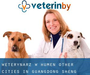 Weterynarz w Humen (Other Cities in Guangdong Sheng, Guangdong Sheng)