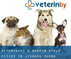Weterynarz w Nankin (Other Cities in Jiangsu Sheng, Jiangsu Sheng)